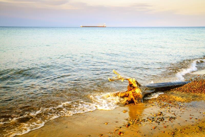 Whitefish Point, Michigan. Beach on Lake Superior in Whitefish Point, Michigan, Upper Peninsula royalty free stock photography