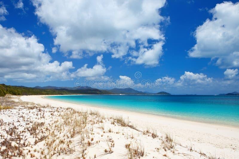 Whitehaven plaża w Whitsundays zdjęcia stock