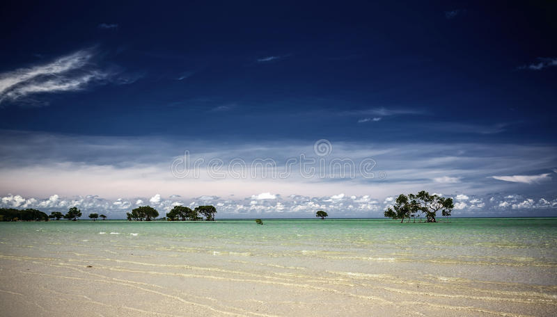 Whitehavenstrand in Australië stock afbeeldingen