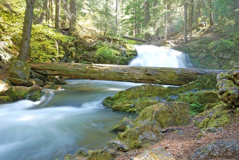 Whitehorse Falls royalty free stock photos