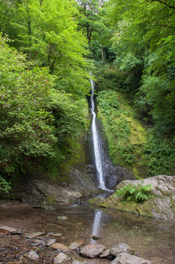 WHITELADY WATERFALL. The longest waterfall in Devon is the White Lady falls at 30m, and can be found at the southern end of Lydford Gorge. The main source of stock photography