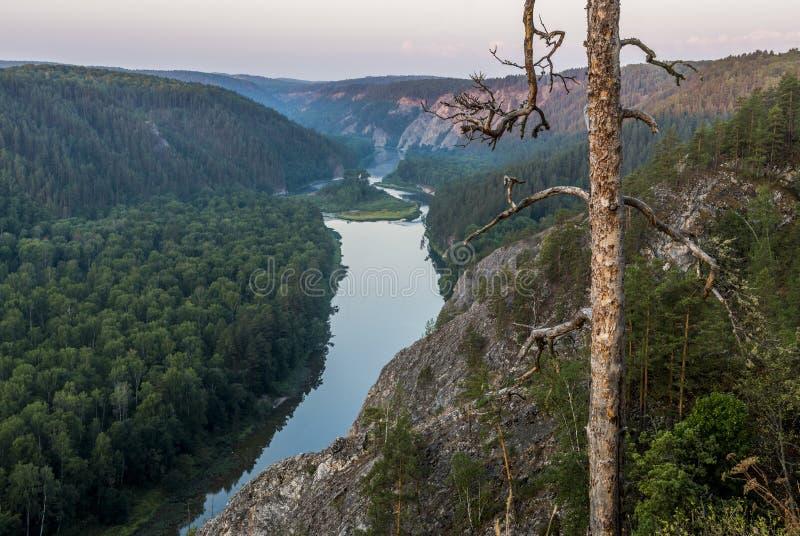 Whitet River royaltyfri foto