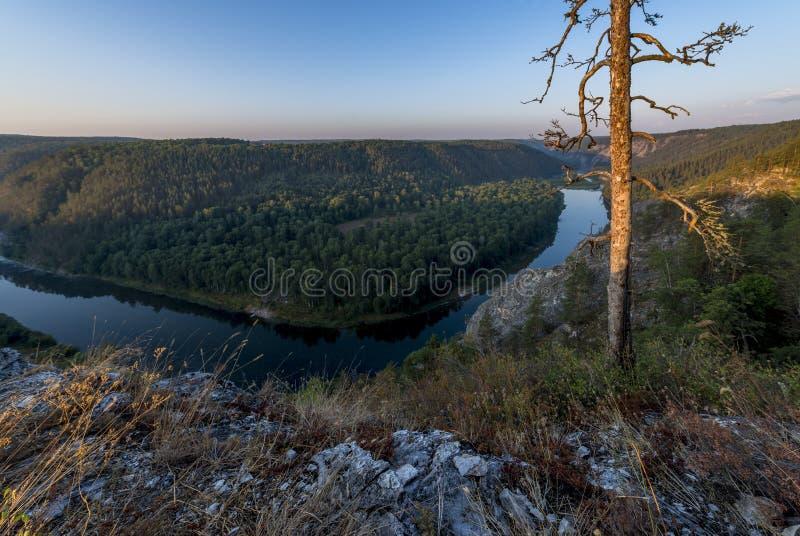 Whitet River arkivfoto