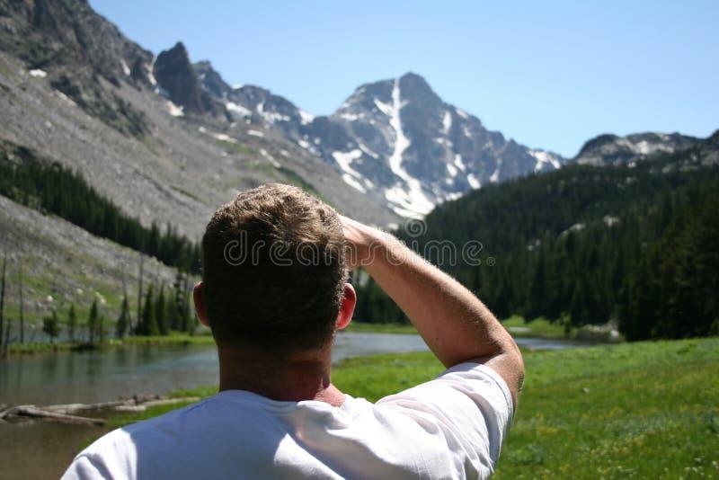 whitetail Монтаны приключения вперед пиковый стоковые изображения rf
