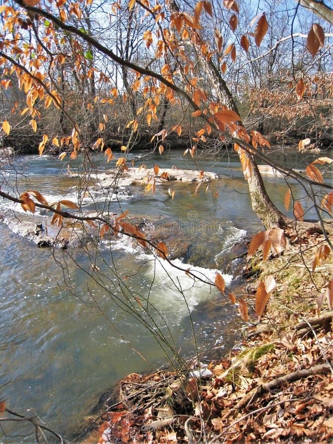 Whitetop Laurel Creek à Damas, la Virginie images libres de droits