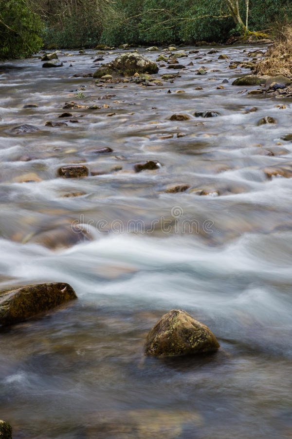 Whitetop Laurel Creek photos libres de droits