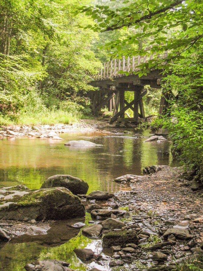 Whitetop Laurel Creek längs Virginia Creeper Trail arkivbild