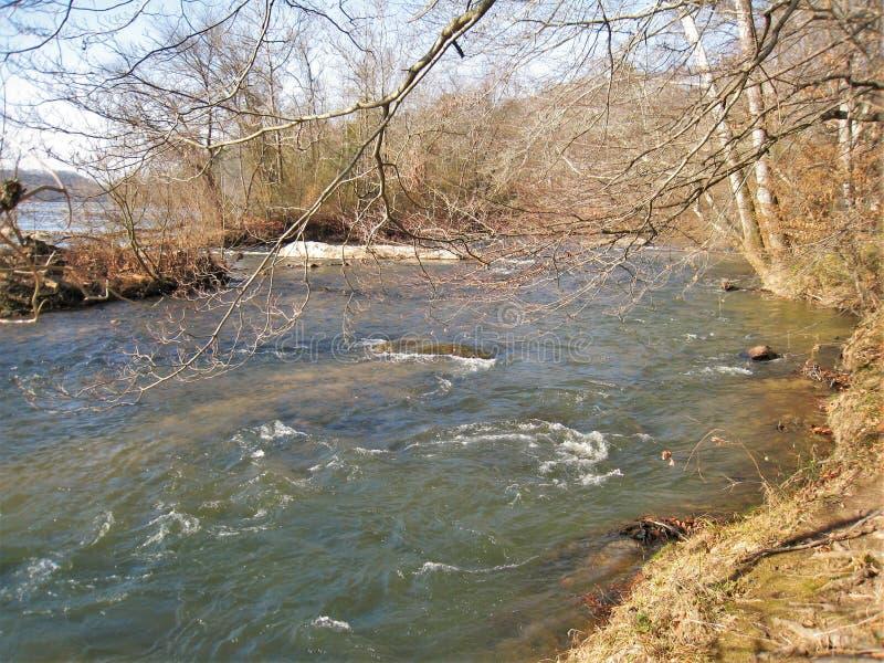 Whitetop Laurel Creek le long de Virginia Creeper Trail photos libres de droits