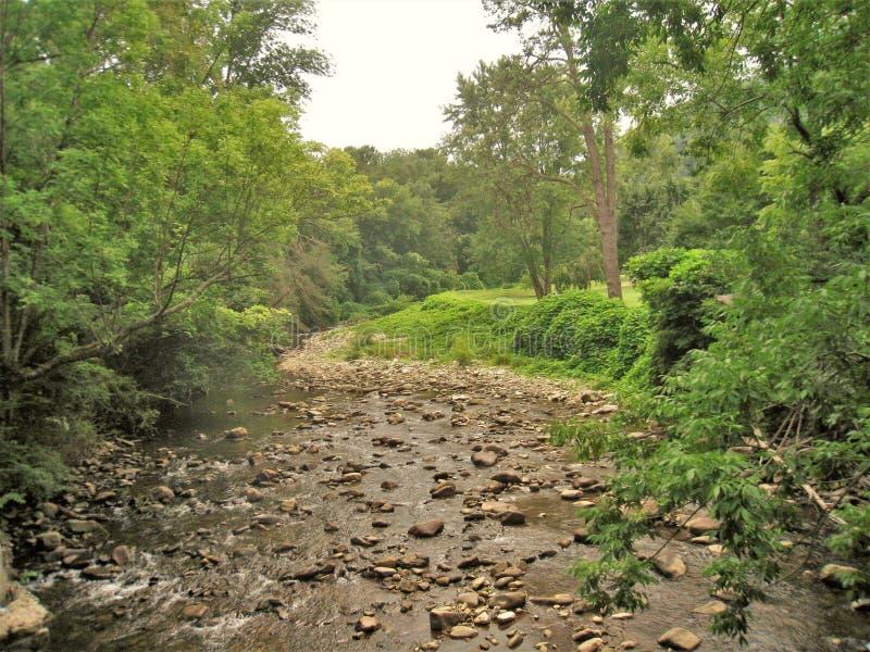 Whitetop Laurel Creek pendant la sécheresse grave images libres de droits