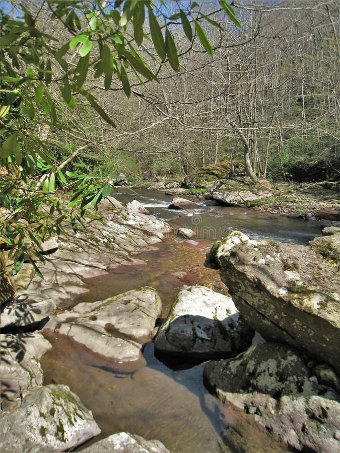 Whitetop Laurel Creek près de Damas, la Virginie image stock