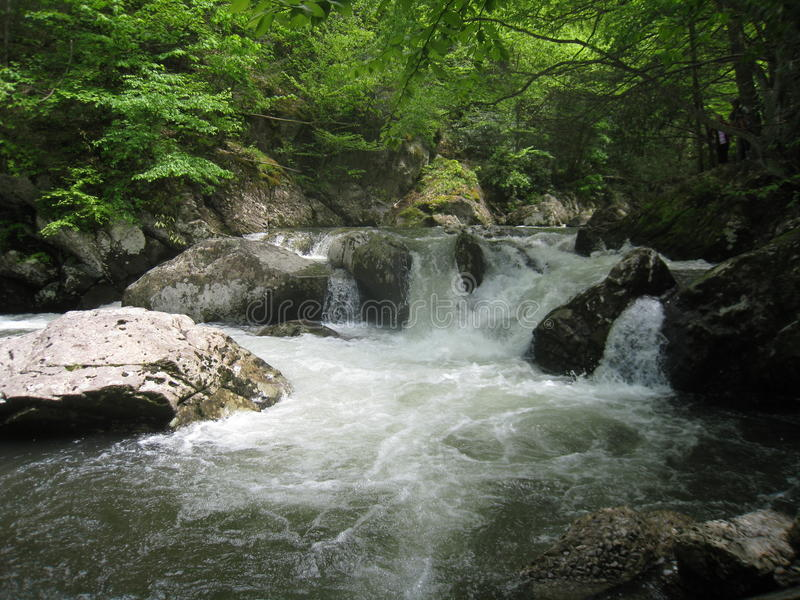 Whitetop Laurel Creek Waterfall photographie stock libre de droits