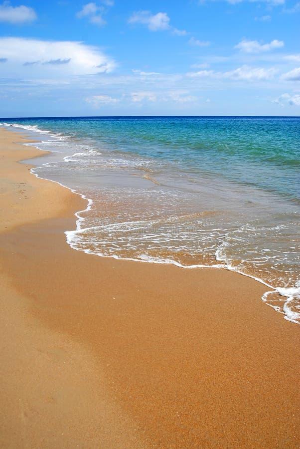 Whitewash auf tropischem karibischem Strand lizenzfreies stockfoto