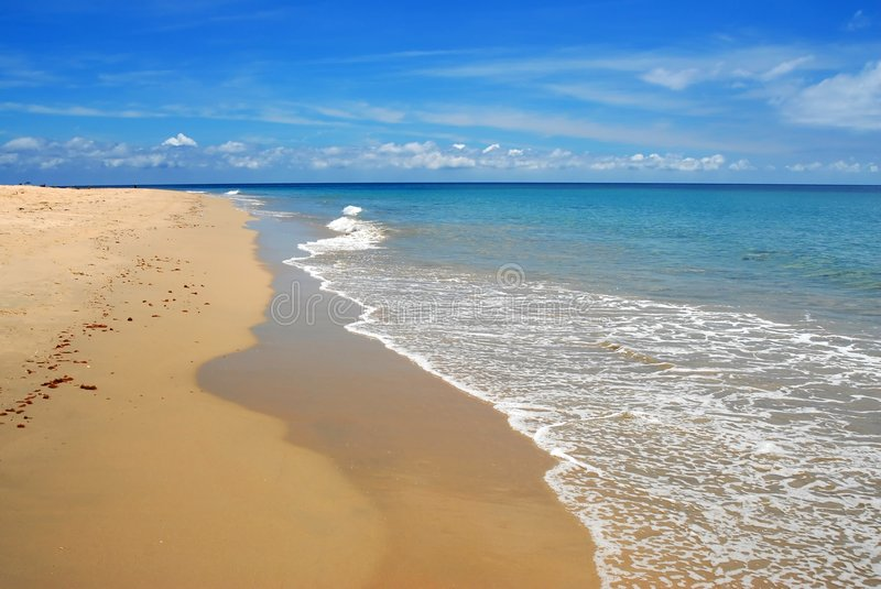 Download Whitewash On Tropical Caribbean Beach Stock Image - Image: 4161607