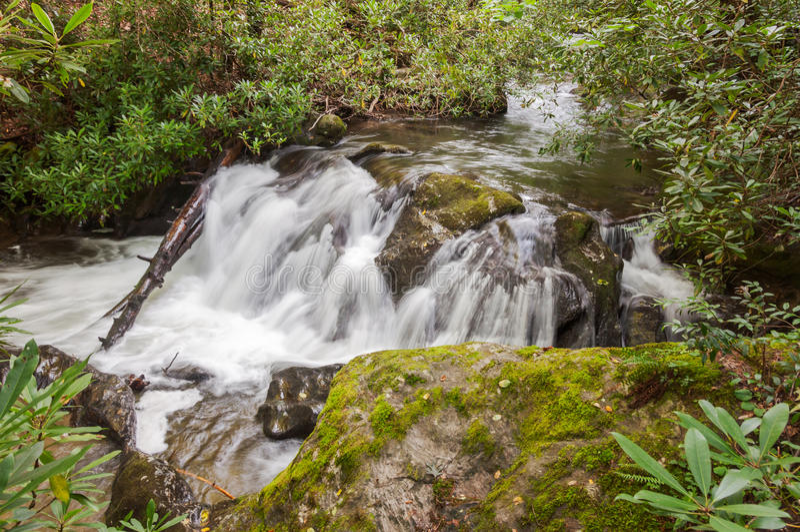 Whitewater στο εθνικό δρυμός Chattahoochee στοκ φωτογραφία