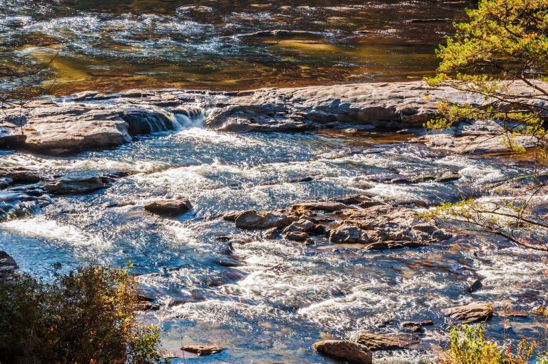 Whitewater στο εθνικό δρυμός Chattahoochee στοκ εικόνα με δικαίωμα ελεύθερης χρήσης