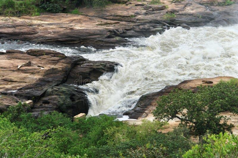 Whitewater bei Murchison Falls in Uganda lizenzfreie stockfotos