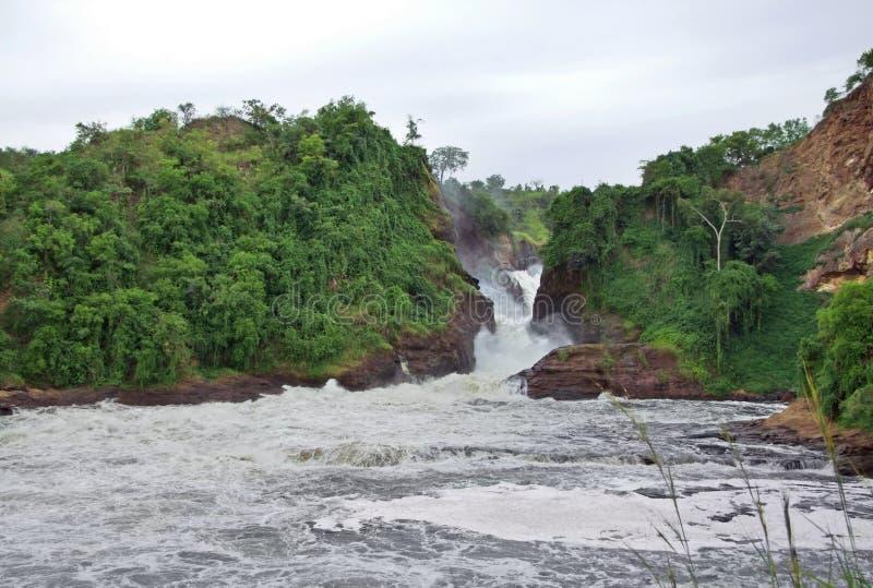 Whitewater beim Murchison Falls stockbild
