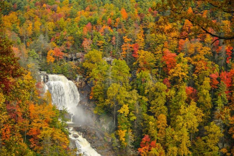 Whitewater cade in Nord Carolina in autunno immagine stock libera da diritti