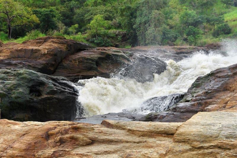 Whitewater beim Murchison Falls stockbilder
