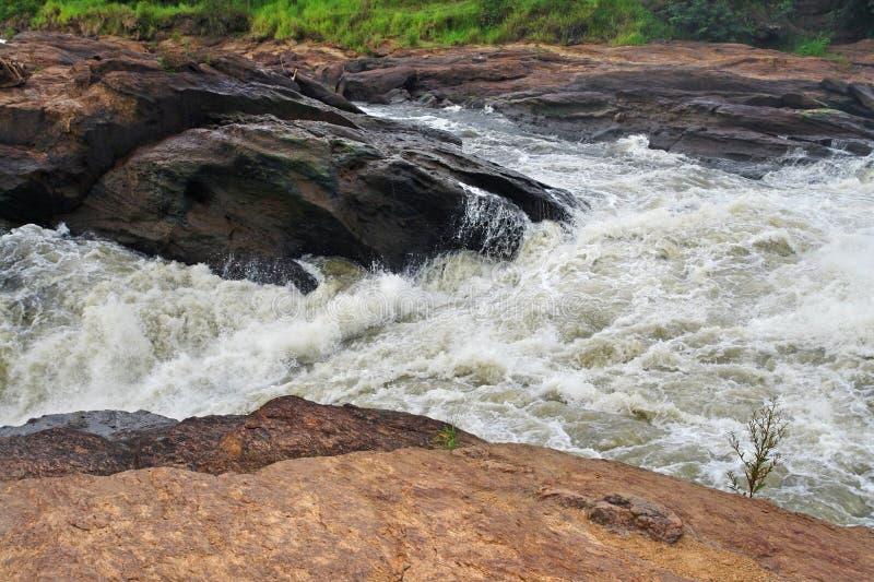 Whitewater en las cataratas Murchison fotografía de archivo