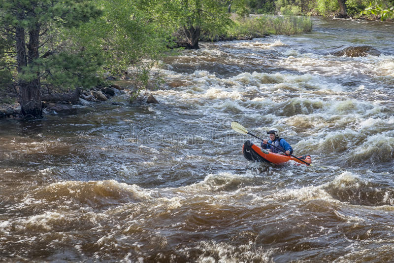 Whitewater kayaker op Poudre-Rivier stock foto's