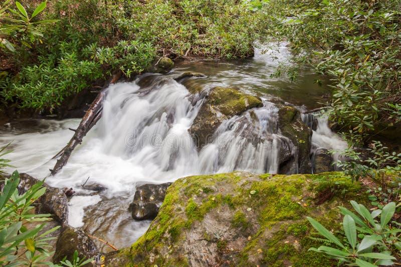 Whitewater na floresta nacional de Chattahoochee fotografia de stock