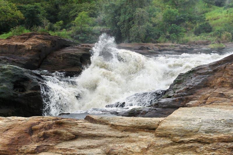 Whitewater på Murchisonet Falls arkivfoto