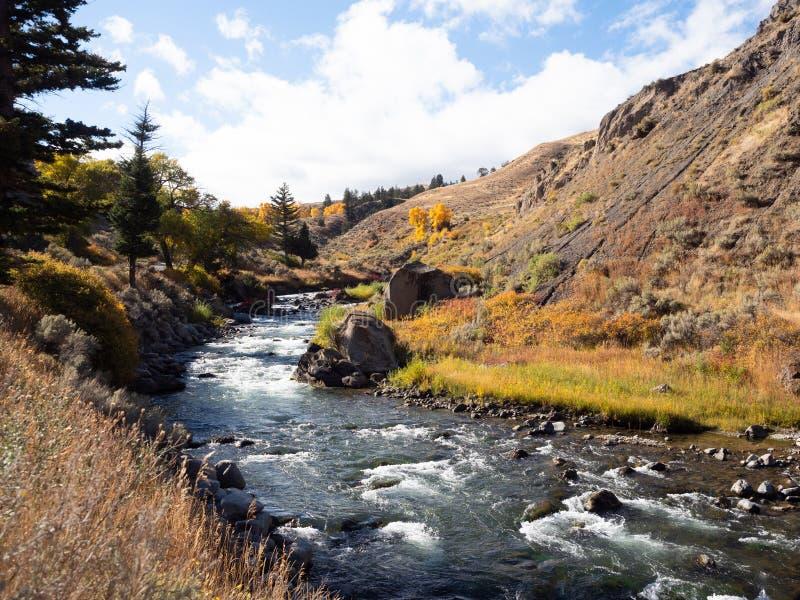 Whitewater rzeka z jesieni roślinnością zdjęcie royalty free