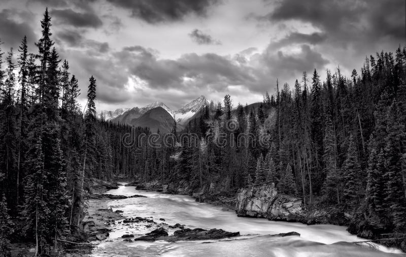 Whitewater W Skalistych górach obraz stock