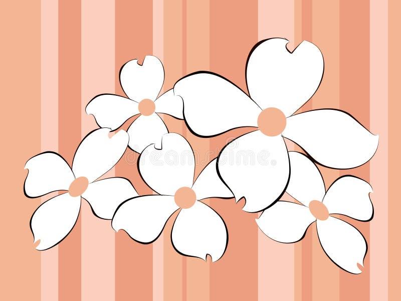 Whitre florece el fondo ilustración del vector