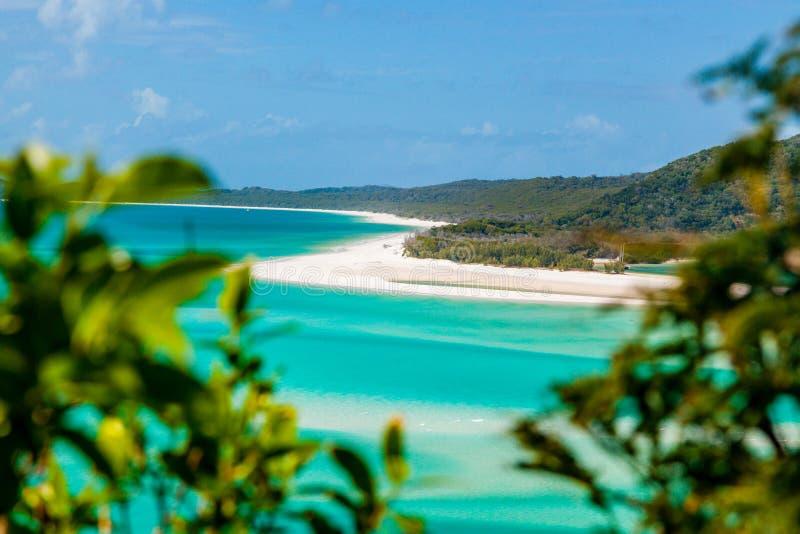 whitsunday öar arkivfoto