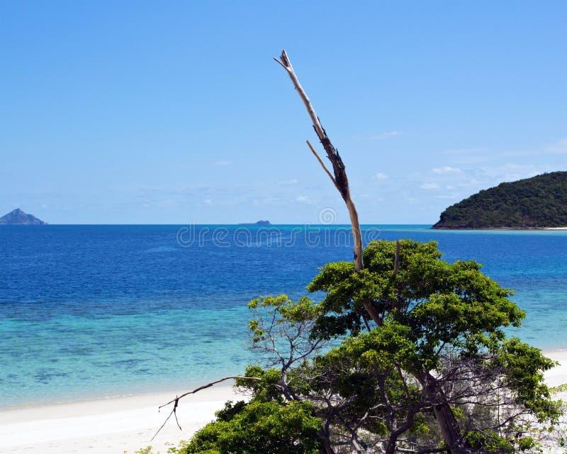 Whitsundays Αυστραλία στοκ εικόνες