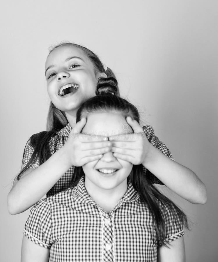 Who van de gissing Speels meisje die ogen van haar het vrolijke zuster en glimlachen behandelen Het leuke kinderen gelukkige glim royalty-vrije stock foto