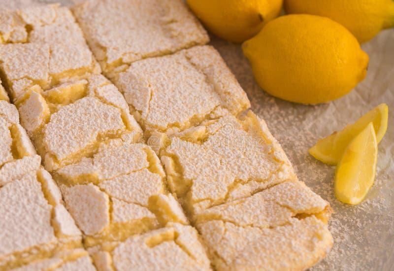 Freshly Baked Lemon Bars. Whole Batch of Freshly Baked Lemon Bars royalty free stock photo