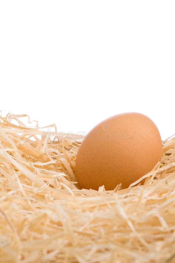 Whole Brown Egg in Nest of Straw stock images