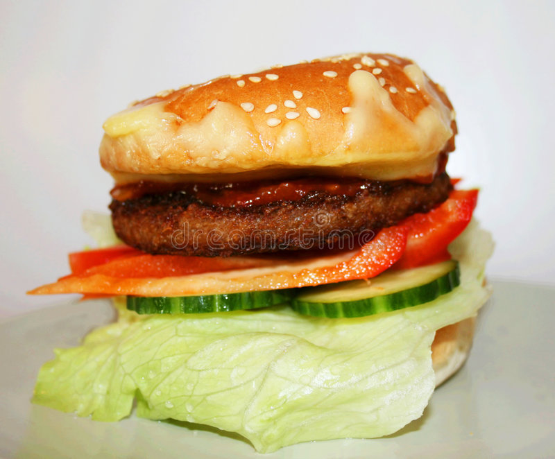 Whole Burger. An macro image of a tasty vegetarian burger with shallow DOF stock photography