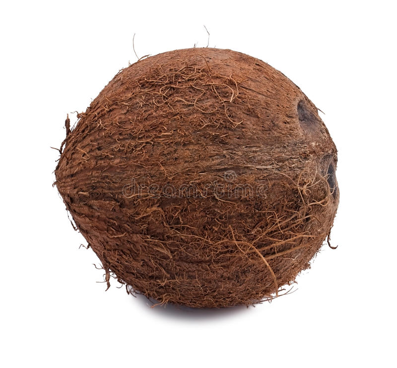 Download Whole Coconut Royalty Free Stock Photography - Image: 17424107