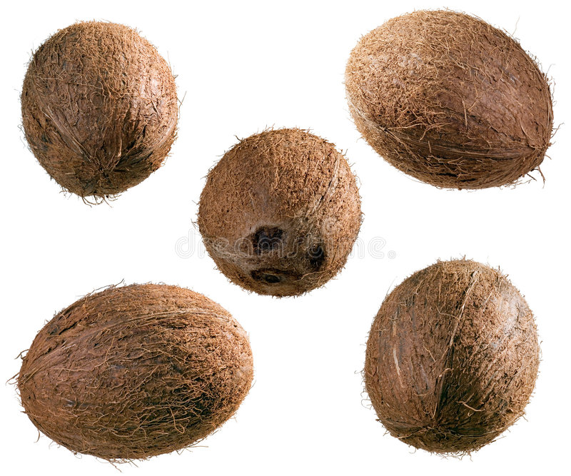 Download Whole Coconuts Royalty Free Stock Photos - Image: 9267508