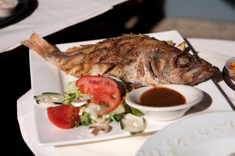 Whole cooked fish and salad. A square white dinner plate holds a whole cooked fish, including head and tail, with a side of sauce and small salad with tomatoes royalty free stock image