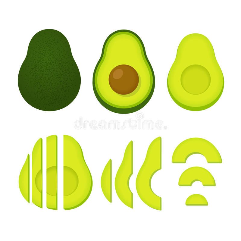 Whole and cut avocado vector illustration