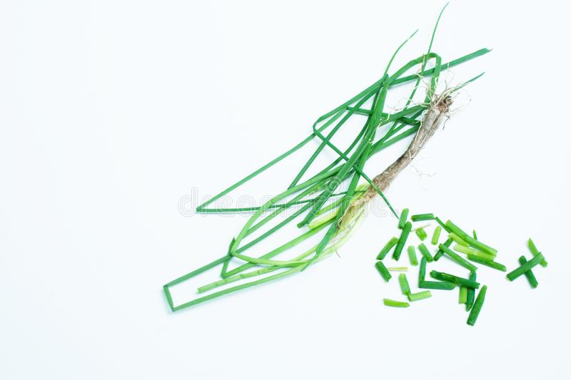 Whole and Cut Chives with Root. One whole chive plant with root and cut chives on white background royalty free stock photos