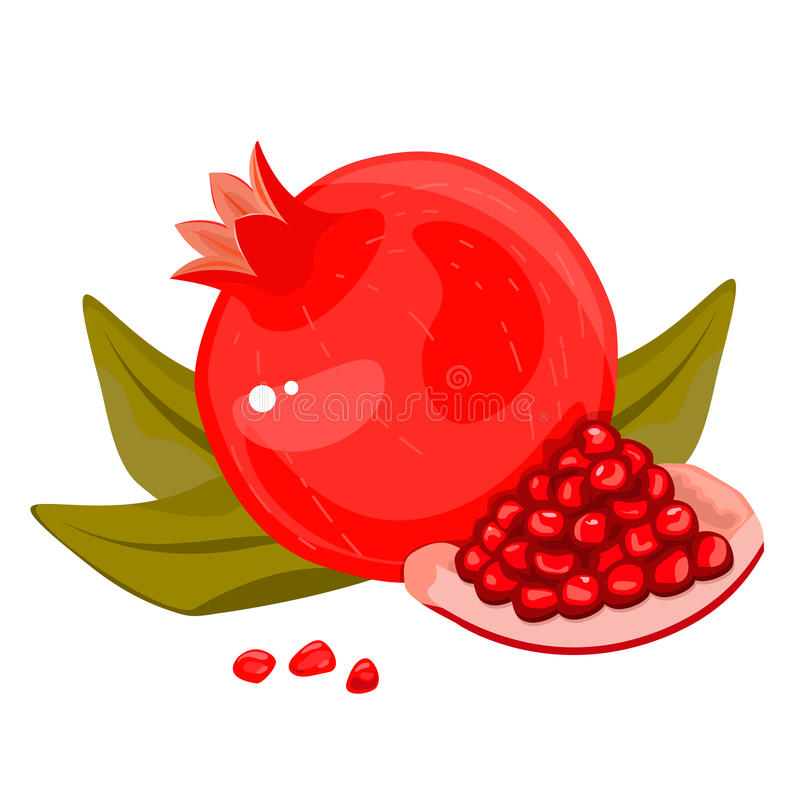 Whole and cut pomegranate icon set. Flat cartoon illustration. stock illustration