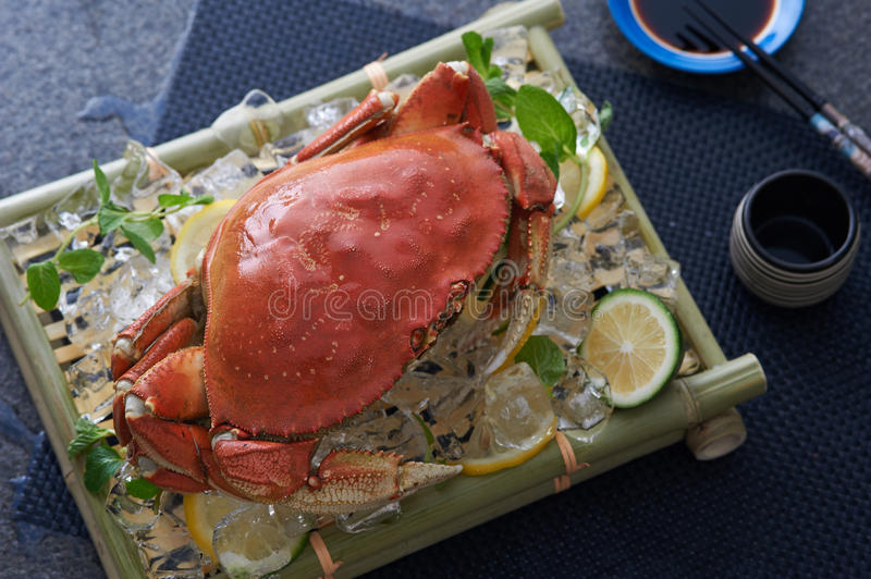 Whole dungeness crab. Steamed and served on ice and citrus slices with soy sauce and chop sticks stock images