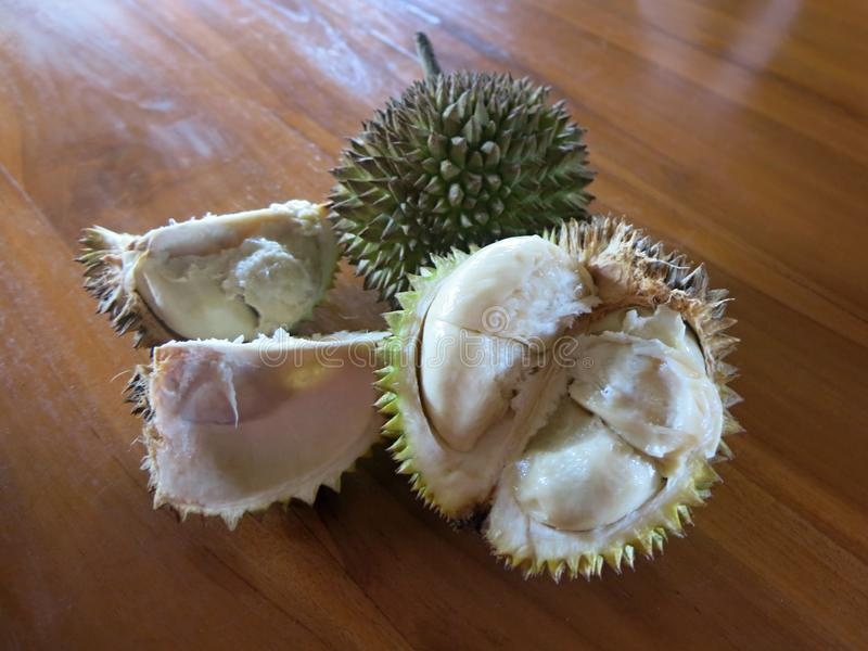 The whole durian. Hard and sharp spines. stock images