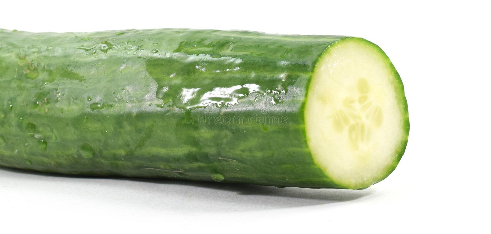 Whole English cucumber with cut end & x28;isolated& x29;. Close-up macro shot of a whole English cucumber with cut end - isolated, white background royalty free stock photography