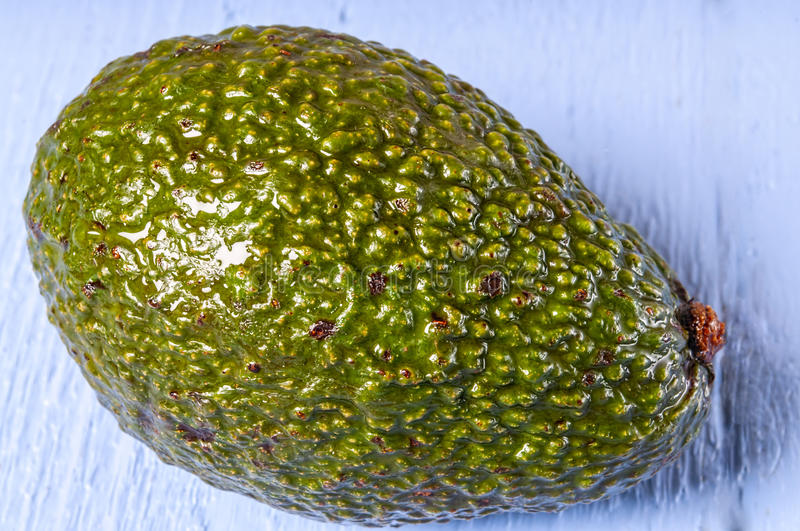 Whole fresh avocado, stock image