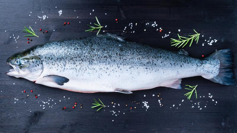 whole fresh raw big salmon fish with seasoning, salt, pepper and royalty free stock images