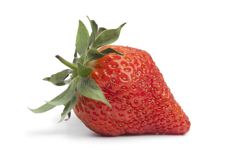 Download Whole fresh strawberry stock image. Image of organic - 23593515