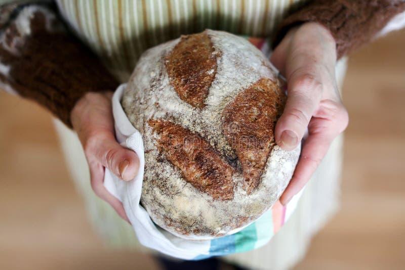 Whole-grain artisanaal broodbrood in grootmoederhanden, het bakken royalty-vrije stock fotografie