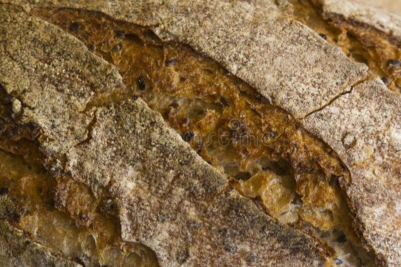 Whole grain baked bread stock image